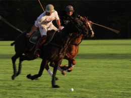 35859086-FallPoloHydePk+11_06_2011158polo_players2 (2)
