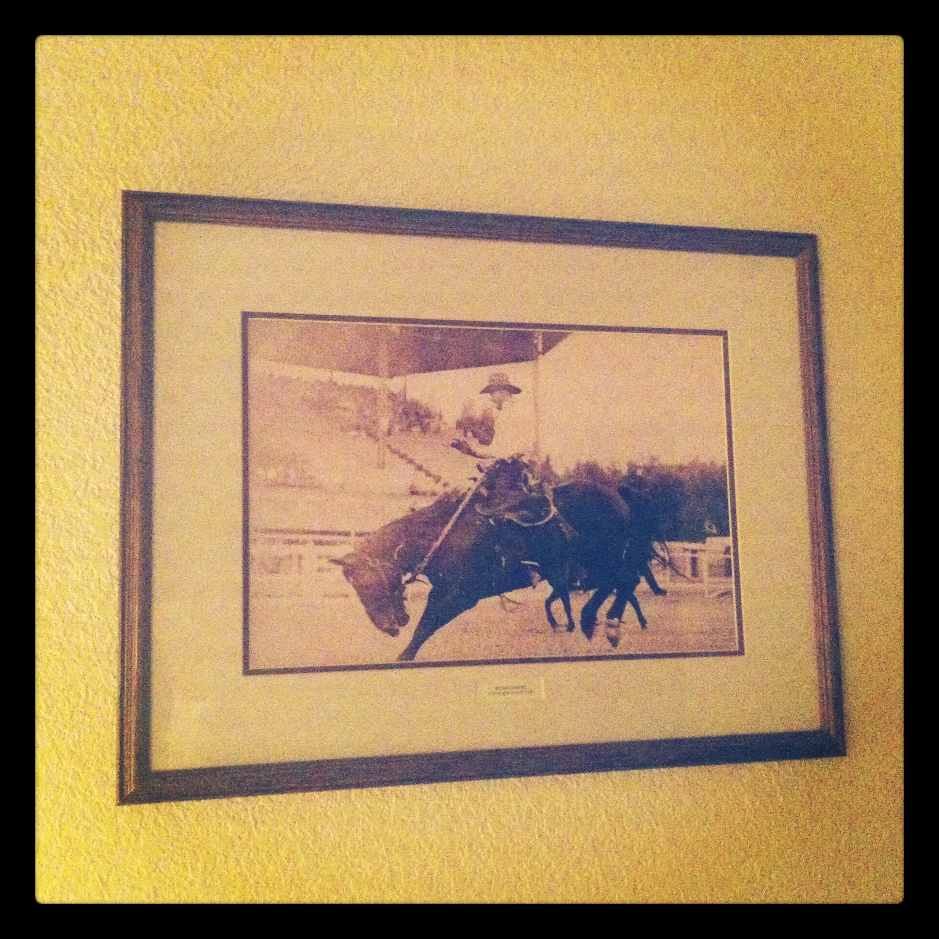 Fresh snow equestrian findings from steamboat springs colorado all jeuxipadfo Gallery