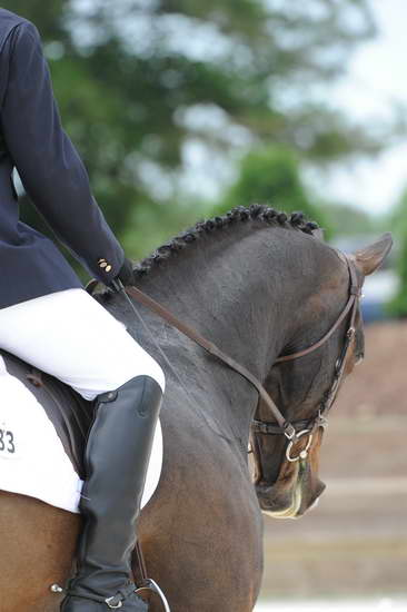 So8ths-5-4-12-Dressage-1261-TraeMeder-DirectFlight-DDeRosaPhoto-1