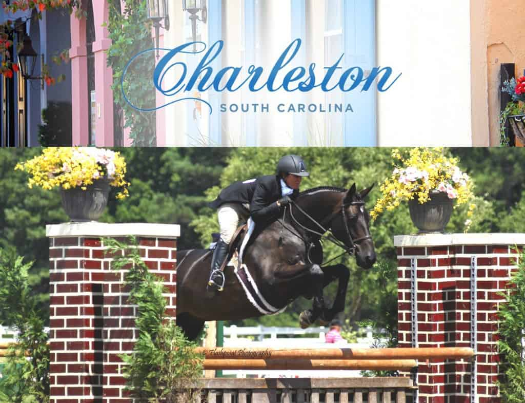 The 25th Anniversary Of Charleston Summer Classic Horse